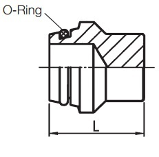 Blanking Plugs