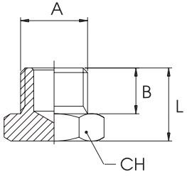 km-npba-blanking-plugs-oring-bspp-diagram